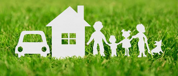 SALESFORCE SPOTLIGHT: Insurance Companies